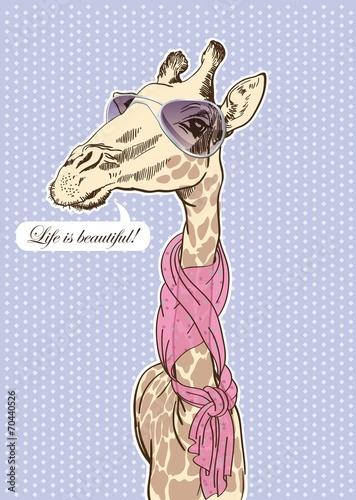 glamorous giraffe - 70440526