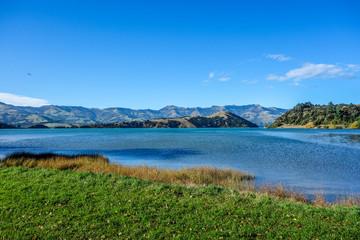 New Zealand 43