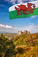 Harlech Castle in Wales, United Kingdom