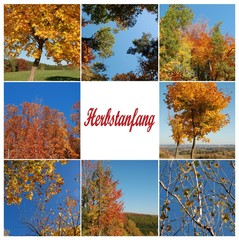 Herbstanfang Collage