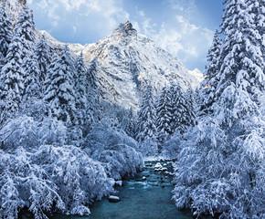 torrente in un bosco appena nevicato