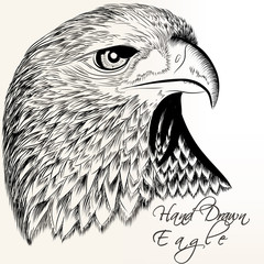 Hand drawn vector eagle close up