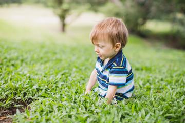 Toddler crawling in the garden and exploring backyard