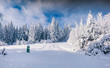 Winter landscape with fir-trees and fresh snow.
