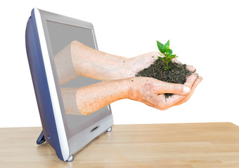 handful of soil with sprouts leads out TV screen