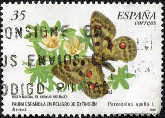 stamp printed in Spain shows Apollon