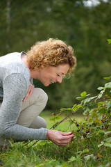 Smiling woman picking berries in the woods