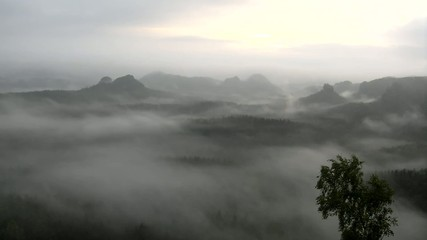 Dreamy misty landscape. Deep valley is full of colorful fog