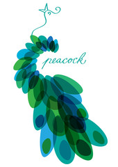 abstract vector background with peacock silhouette