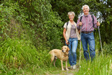 Fototapety Paar Senioren wandert mit Hund