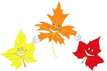 autumn maple leaves smile