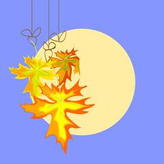 autumn   leavse on moon background