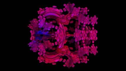 metamorphosis fractal loop animation