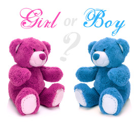 Pink and blue teddy bear on a white background