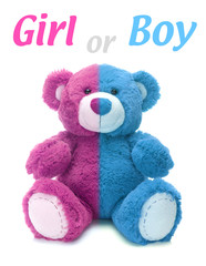 Is it a boy or a girl teddy bear?