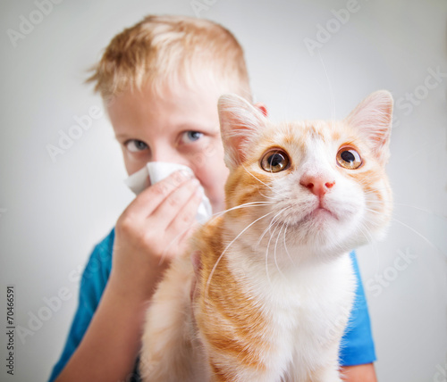 A boy with cat allergy - 70466591