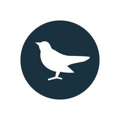bird circle background icon.