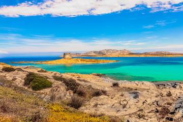 La Pelosa beach view with beautiful azure colored water