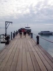 the port in samui