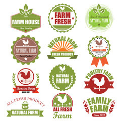 Set of Fresh Organic Labels and Elements Badge. Vector Illustrat