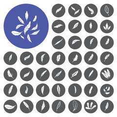 Feather icons set. Vector Illustration eps10