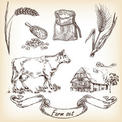 Farm set. Hand drawn illustration of cow, house, grain, meal