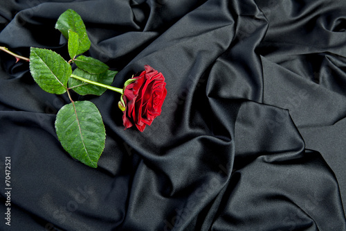 canvas print picture Trauer Rose