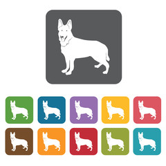 German shepherd icon. Dog icons set. Rectangle colourful 12 butt