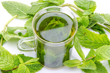 Cup of mint tea in the middle of fresh mint