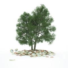 Baum wächst aus Euro-Münzen