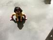 水たまりで遊ぶ女の子