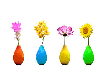 Flowers in vases