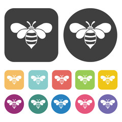Bee icon. Farming icon set. Round and rectangle colourful 12 but