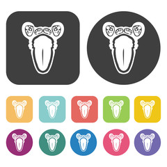 Ovary icon. Human organ icons set. Round and rectangle colourful