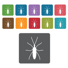 Bug icon. Insect icon set. Rectangle colourful 12 buttons. Vecto