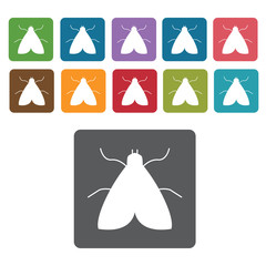 Moth icon. Insect icon set. Rectangle colourful 12 buttons. Vect