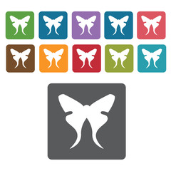 Butterfly icon. Insect icon set. Rectangle colourful 12 buttons.