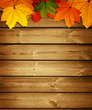 canvas print picture - wooden background with autumn maple leaves