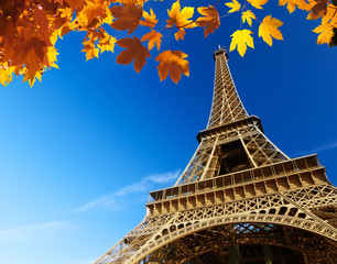 Eiffel tower in autumn time