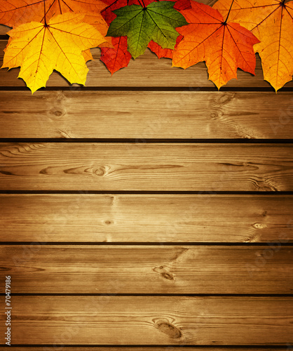 canvas print picture wooden background with autumn maple leaves