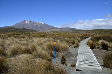 Tongariro trail and Ruapehu summit on background