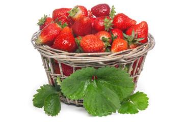 Strawbery basket