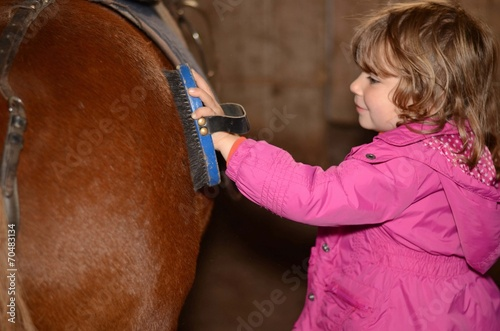 fête du cheval - 70483134