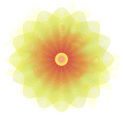 Meditative lotus flower