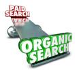 Organic Vs Paid Search Internet Marketing Advertising SEO Result
