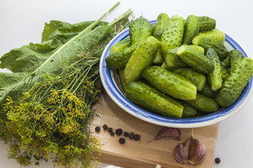 Preparation for salting of cucumbers