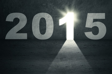Bright door to future 2015