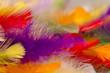 canvas print picture - Regenbogenfarben