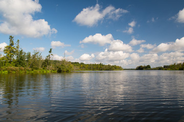 Sommer-Wasserlandschaft