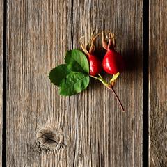 Rose hip over old wooden background